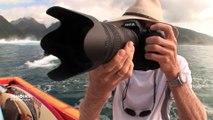 Polynésie Française : L'oeil de Tim McKenna
