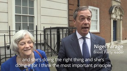 Nigel Farage: Anne Widdecombe doing a brave thing joining Brexit Party