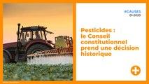Pesticides : le Conseil constitutionnel prend une décision historique