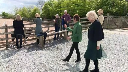 Duchess of Cornwall visits Horses for People centre