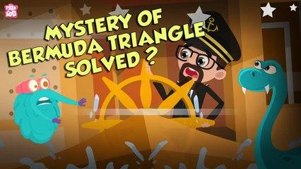 Is Bermuda Triangle's Mystery Solved?   BERMUDA TRIANGLE   Dr Binocs Show   Peekaboo Kidz