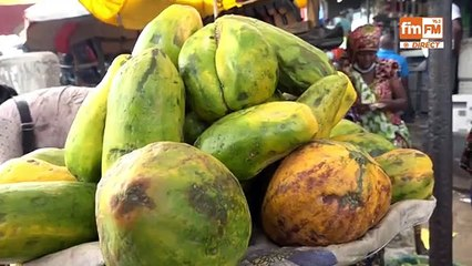 Port autonome de Conakry : Téléscopage de concessionnaires, heurts et malheurs d'un EPA (Fim Fm)