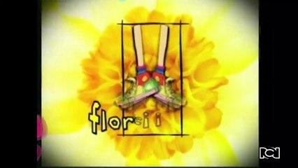 Capítulo 69   Flor prueba que es buena para la cocina