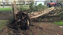 Avis de tempête sur l'ouest de l'Europe : dégâts, inondations et trafic perturbé