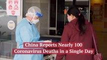 Coronavirus Deaths Per Day