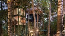 Bali's New Treetop Hotel Takes You Closer To Your Dreams