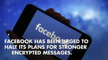 Facebook urged halt encryption plans over safety concerns