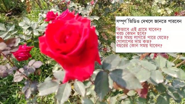 A day Tour in Rose Village Dhaka 2020  Golap Gram  Bangla Vlogs গোলাপ গ্রাম ভ্রমণের সম্পুর্ন গাইডলাইন ২০২০