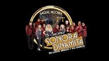 La Sonora Dinamita Ft. Raquel Bigorra - La Loba - Video Lyrics - Xiu Garcia
