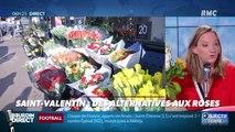 Objectif Terre : Saint-Valentin, des alternatives aux roses - 14/02