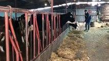 Genç girişimci çiftliğinde ürettiği sütü değerlendirmek için çay ocağında satmaya başladı