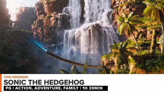 In Theaters Now: Sonic the Hedgehog, The Photograph - Weekend Ticket