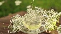 6 bonnes raisons de boire du thé tous les jours