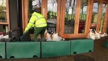 Avenham Park flood defence