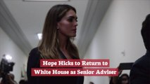 Hope Hicks Is Back