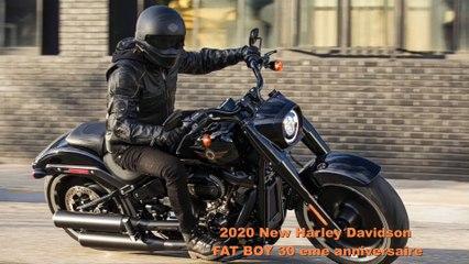 2020 new Harley-Davidson Fat Boy 114 30th Anniversary Limited Edition