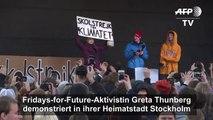 """Thunberg: """"Wir befinden uns am Anfang der sechsten Massenausrottung"""""""