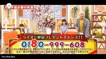 芦田愛菜 鈴木梨央 獅子的午安 2015 04 02
