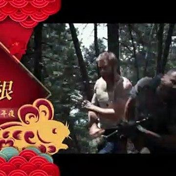 龍華洋片【動作強檔迎鼠年】精彩預告