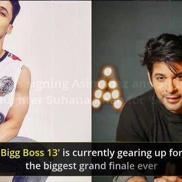 Bigg Boss 13: Say What, KJo To Rope In Asim Riaz Opp SRK's Daughter Suhana Khan For SOTY 3? KRK Reveals