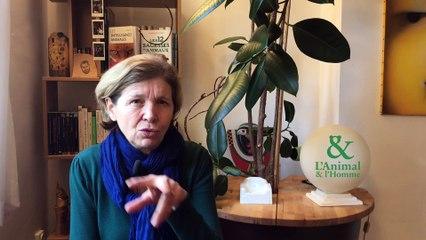 Interview 2 de Nathalie Torjamn : La complicité des vautours