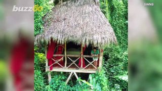 Tropical Paradise! Drone Footage Captures Collection of Secluded Cabins Deep in Dominican Jungle!