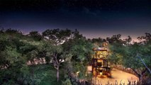 Solar-Powered Treehouse Suspends You Above The South African Bush
