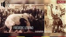 15 septembre 1885 : le jour où l'éléphant Jumbo est tué par un train