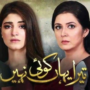 Tera Yahan Koi Nahin - Episode 16 Promo - HUM TV Drama