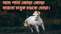 Aam pata Joda Joda marbo chabok chorbo ghora । আম পাতা জোড়া জোড়া মারবো চাবুক চড়বো ঘোড়া। বাংলা কবিতা। বাচ্চাদের প্রিয় ছড়া।