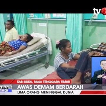 Darurat DBD di Kabupaten Sikka, Lima Orang Meninggal Dunia