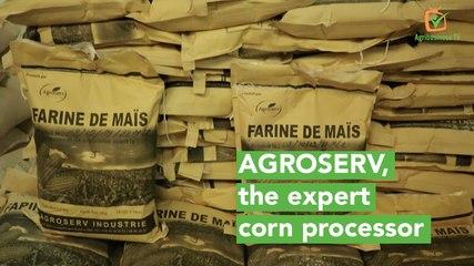 Burkina Faso: AGROSERV, the expert corn processor