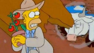 Los Simpson - Tomaco en castellano