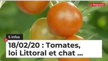 Tomates, loi Littoral et chat... 5 infos du 18 février