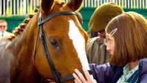 Dream Horse - Official Trailer