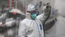 Coronavirus: où en est-on plus d'un mois après le début de l'épidémie ?