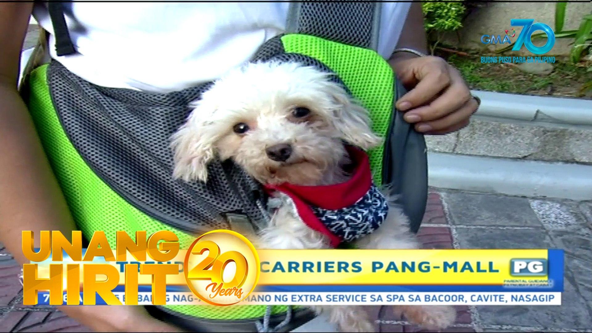 Unang Hirit: Pet Carriers for your Fur Babies!