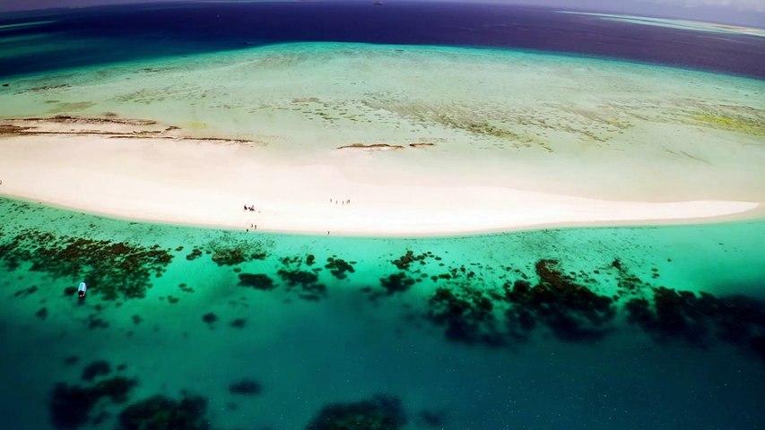 Drone view - Tanzania Beach