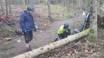 Région de Colmar : après la tempête, des vététistes remettent la forêt en état