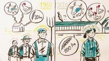 Agriculture : l'évolution des exploitations depuis plus d'un demi-siècle