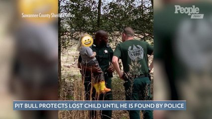 Hero Pit Bull Protects Young Lost Owner Until the Child Is Found by Police: 'Give That Dog a Bone'