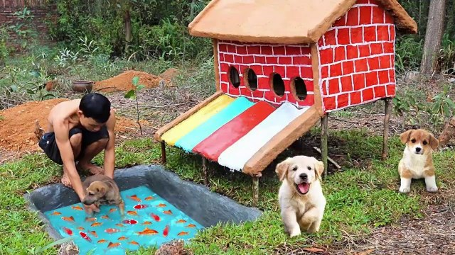 How To Build Colors Water Slide House For Abandoned Puppies