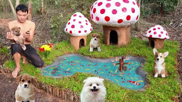 Rescue Abandoned Puppies Building Mud House Dog And Fish Pond For Black Fish