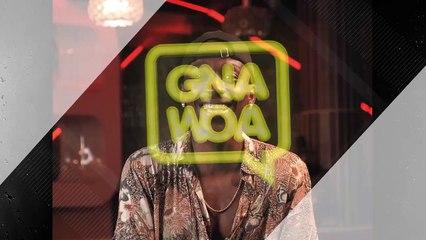 Fofo skarfo - Gnawoa Saison 2