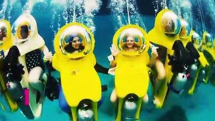 Stuart Cove's Dive Bahamas Subs, Snuba & Snorkel