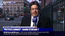 """""""Petites connes"""": pour Meyer Habib, """"il n'y a aucune insulte"""" contre les insoumises"""