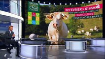 Agriculture : un salon populaire malgré un contexte compliqué ?