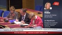 """Audition : Elisabeth Borne dénonce le """"développement anarchique"""" des éoliennes - Les matins du Sénat (19/02/2020)"""