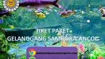 Tlp. 0815-6110-900, Tiket Gelanggang Samudra Bandung 2020