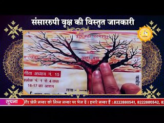 संसाररूपी वृक्ष की सही जानकारी   Sant Rampal Ji Sastang   SATLOK ASHRAM